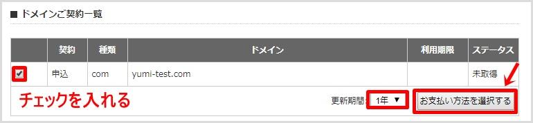 wpXクラウドでの新規独自ドメイン取得手順9