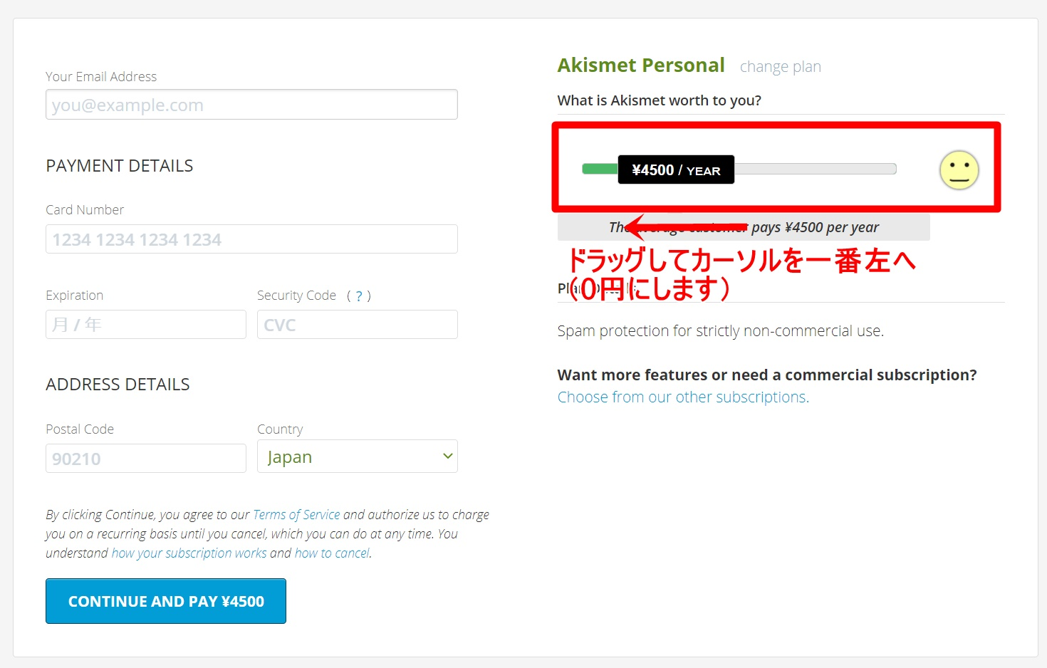 Akismet Anti-Spamの設定方法4